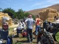 Cambria Retreat, Fiscalini Ranch
