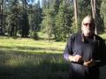 Quaking Aspen, CA